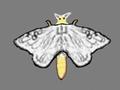 関連記事=「ハトよ 鳴いておくれ:愛しき古里:蚕種が見えない悩み:富岡製糸場と絹産業遺産群(2014年1月14日(火))」