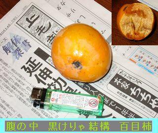 Iob_photo_hikuling_hyakumekaki