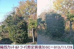 Iob_cyabohiba_sentei_2013