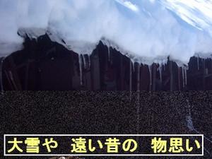 Iob_photo_hikuling_ooyuki_turara