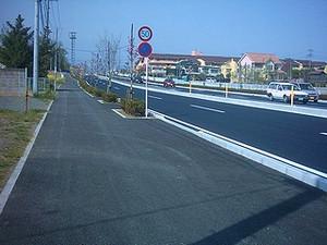 Iob_kokudou462hanamizukikaidou_2014