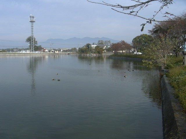 Hachimannuma_sirasagi