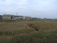 Oidogawa_cyousetu_ike1110