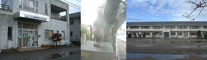 Shimamura_p_school