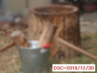 Iob_2019_mochituki_20191230