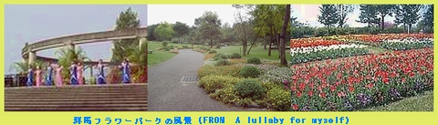 Iob_2020_g_fl_park_froma_lullaby_fo